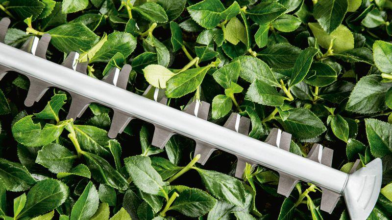 Bosch UniversalHedge Cut 50-1