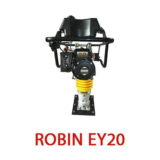 Robin EY20